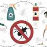 Curso Control de Plagas INEM